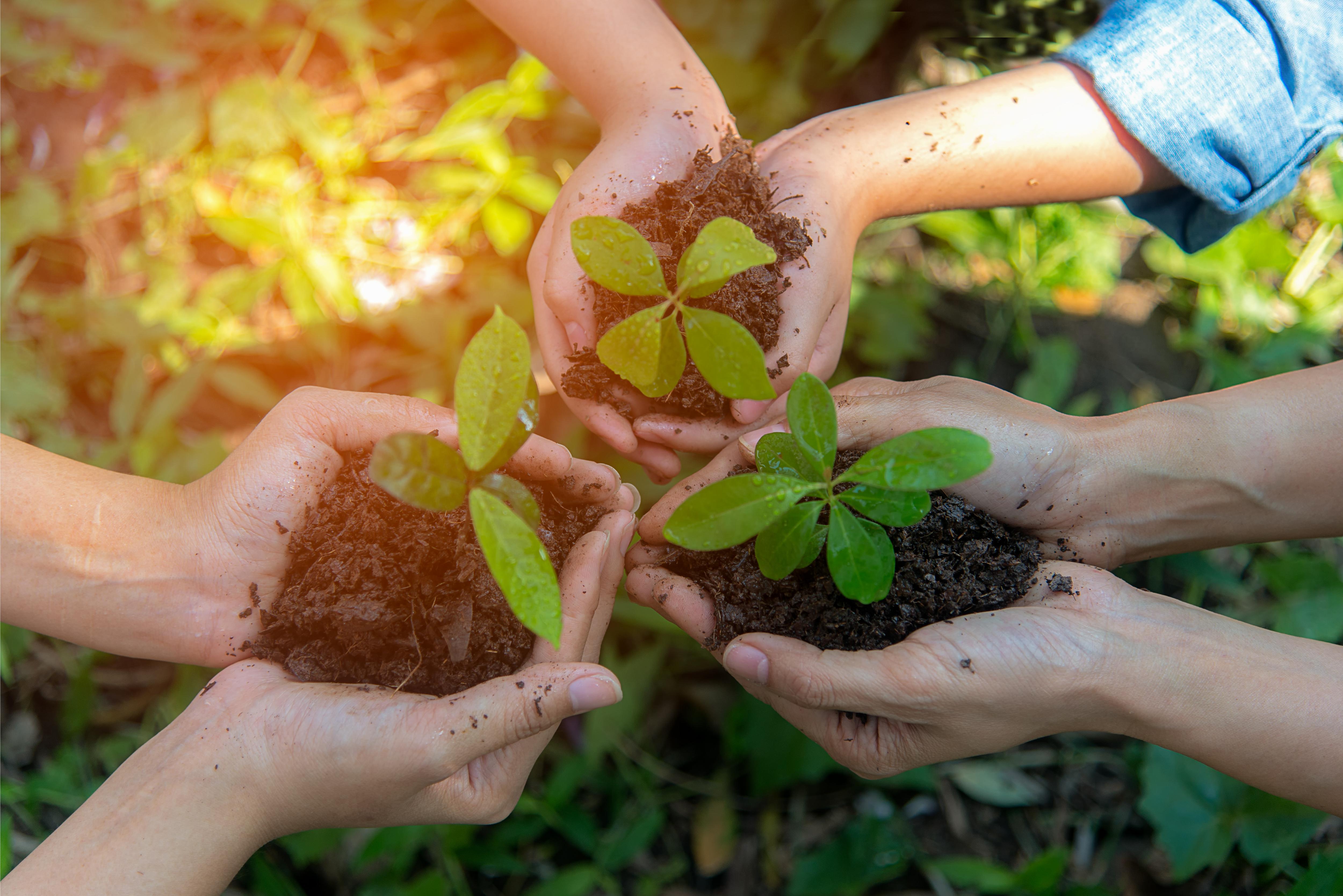 Biodiversité dans l'immobilier : OGIC